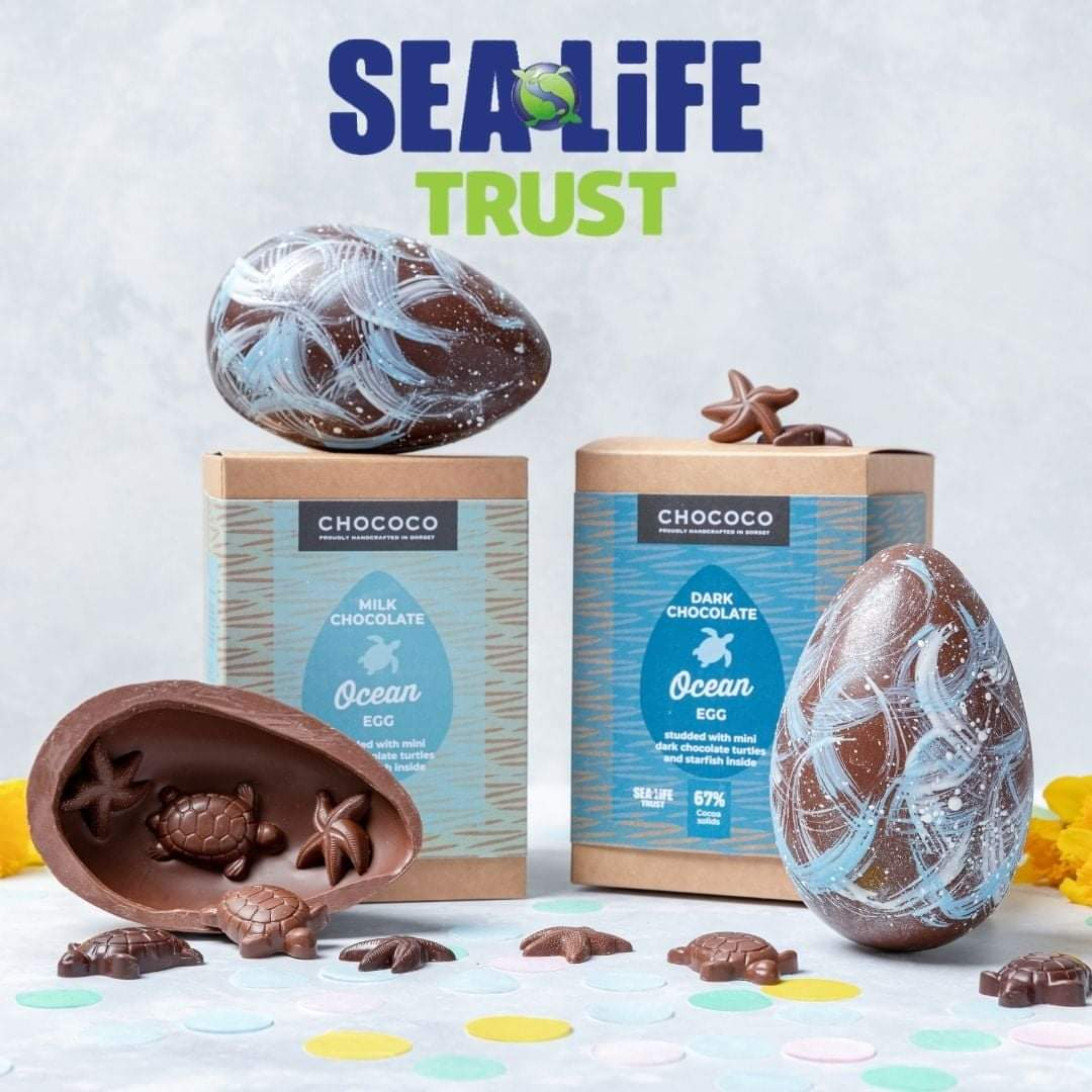 Thank you for buying our charity Ocean Eggs, we are donating £2,128 to the Sea Life Trust!