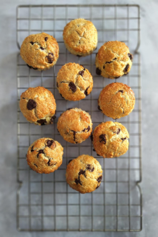 Chococo's Chocolate Chip Scones